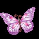 butterfly purple icon