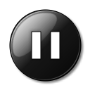 Style Pause icon